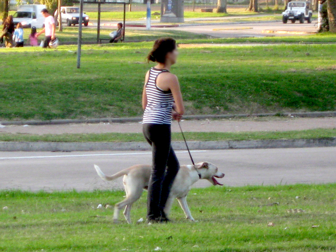 Lady running with a dog