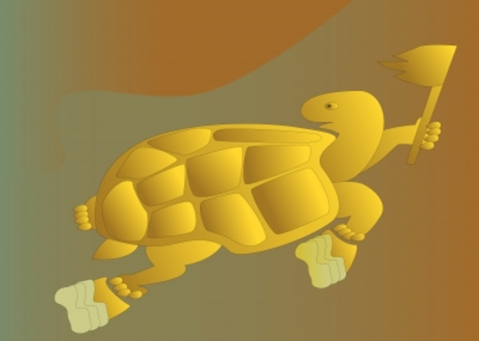 A turtle with running shoes on