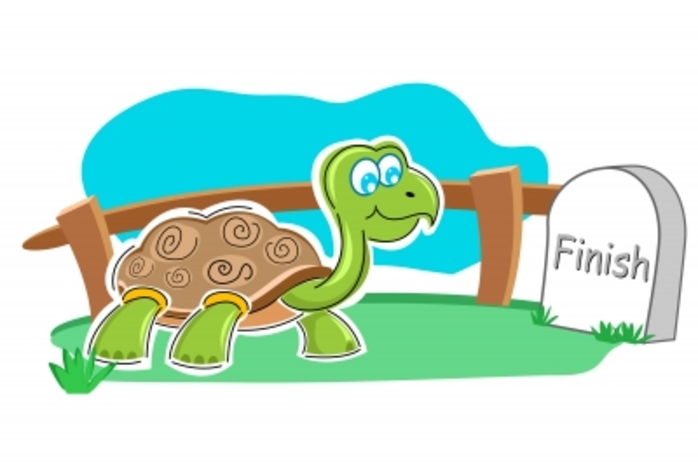 A turtle/tortoise approaching the finish