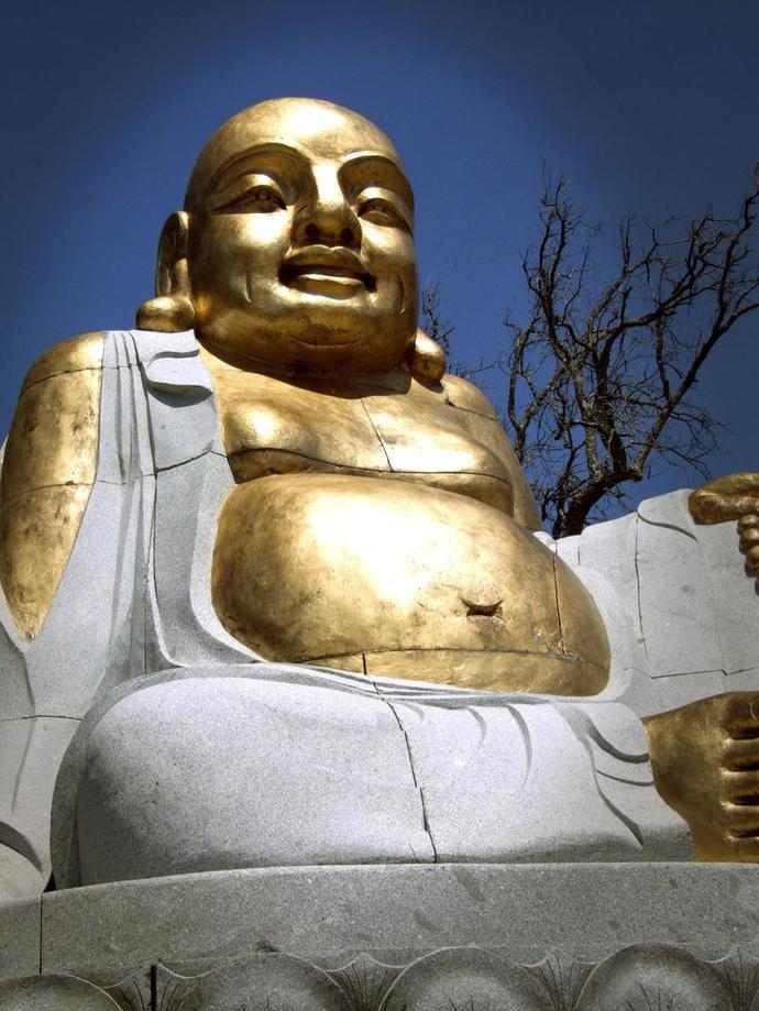 Budha Reflecting