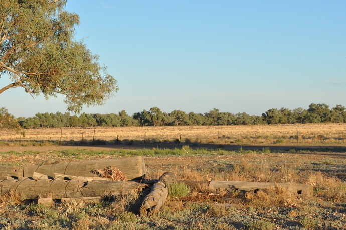 Cattle station in NSW