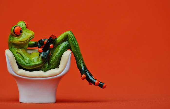 Frog sitting in chair
