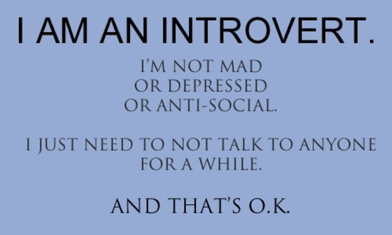 Image result for introvert quote