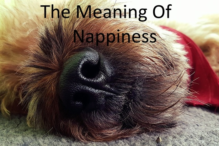The meaning of nappiness