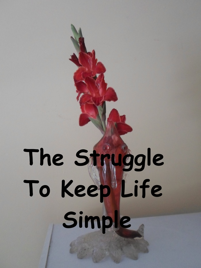 The Struggle To Keep Life Simple