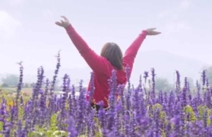 Woman in Lavender Field. Freedom. Happy